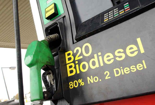 Дизель или биодизель?