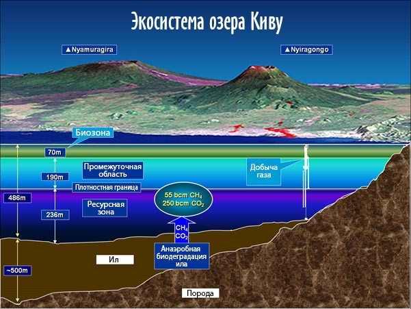 Подводная экосистема озера Киву
